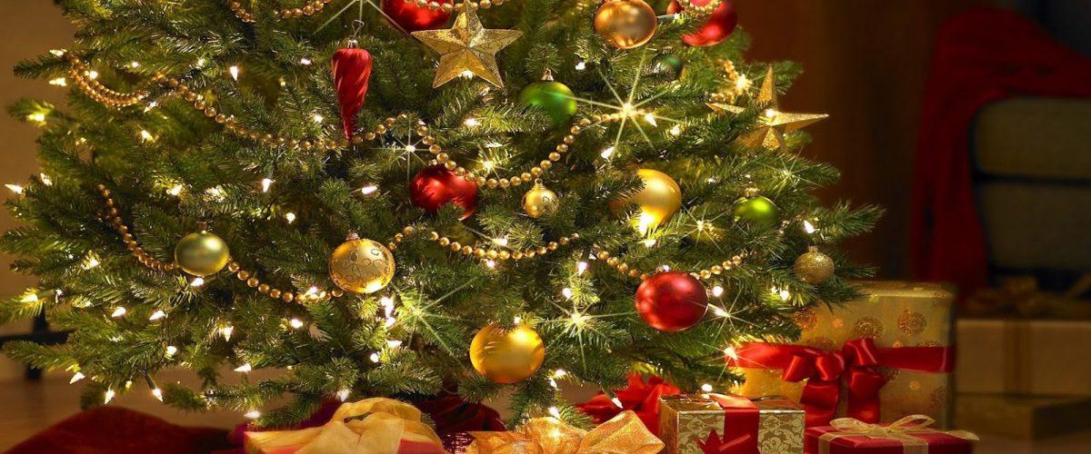 Descubre nuestros menús de Navidad 2016